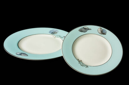 Blue Rimmed Silver Shell Plates